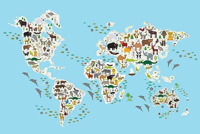 About world animals and endangered species with King Dom |Endangered Animals Map
