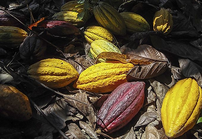 https://www.worldatlas.com/r/w728-h425-c728x425/upload/0f/c6/48/100022-cocoa-08-cocoa-pods-on-ground.jpg