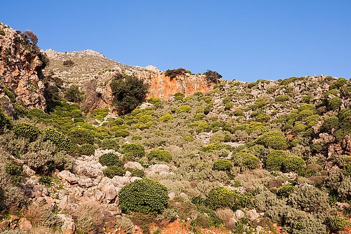 Phrygana shrubland ecoregion in Crete, Greece.