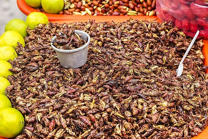 Chapulines for sale at a street vendor.