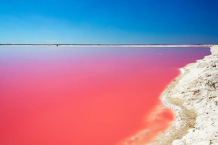 Risultati immagini per las coloradas pink lake