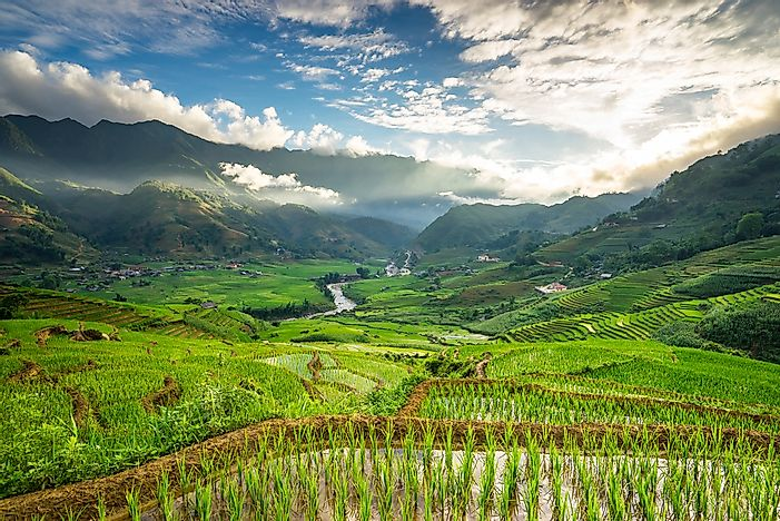 The rice terraces of Sapa, Vietnam.