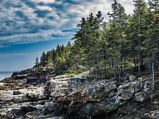 Coastal cliffs on Mount Desert Island, in Maine's Acadia National Park.
