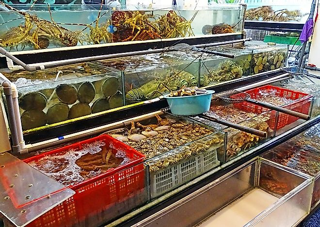 Top Fish And Seafood Exporting Countries