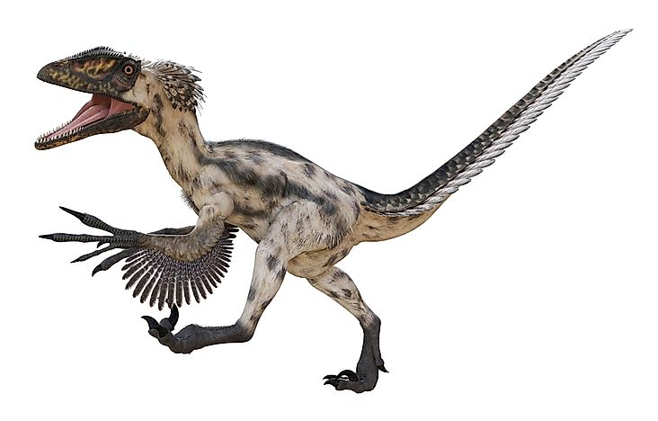 Deinonychus Facts: Extinct Animals of the World