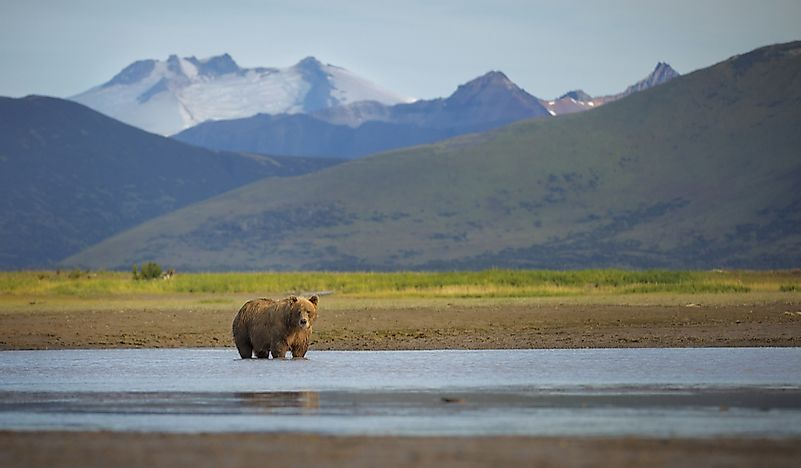 #1 Katmai National Park and Preserve
