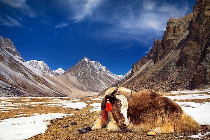 #1 Bhutan (10,760 feet)