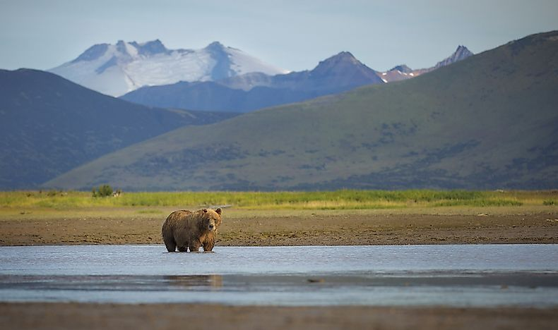 #7 Katmai National Park and Preserve