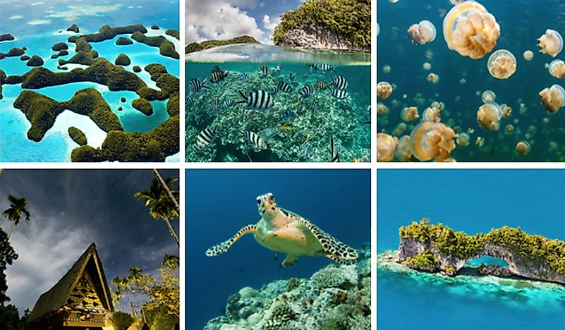 10 Interesting Facts About Palau
