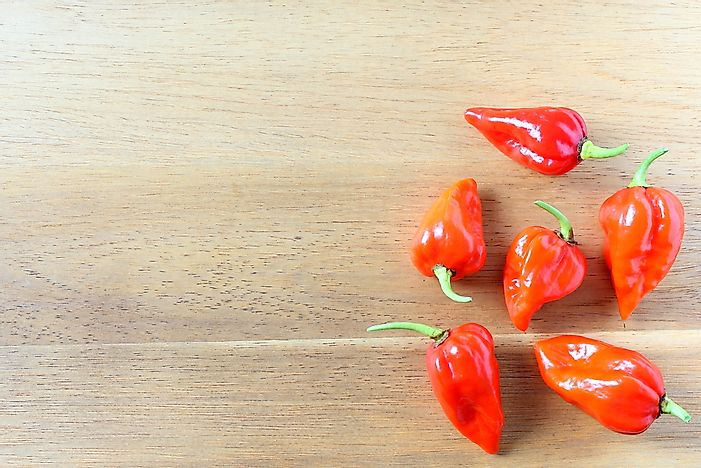 The ghost pepper is among the world's hottest pepper types.