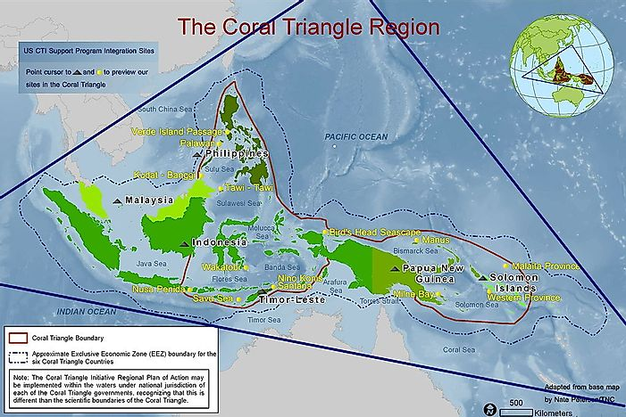 The Importance of Conserving The Coral Triangle