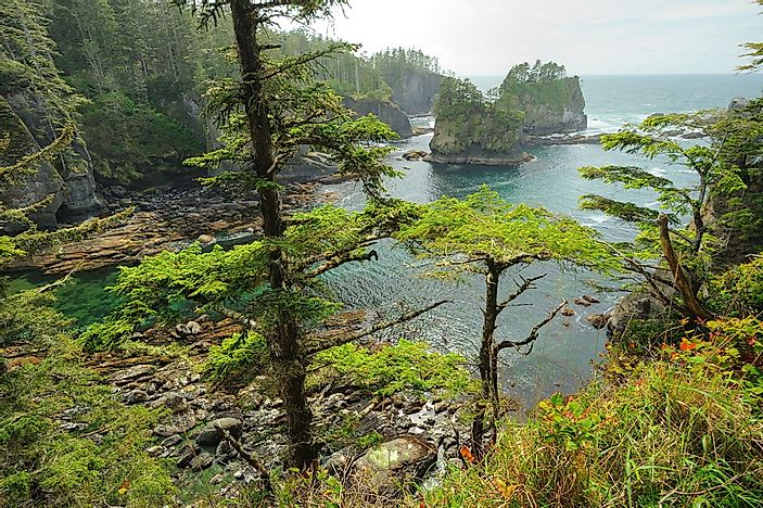 #4 Olympic National Park