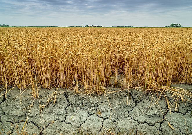 What Are The Different Types Of Drought?