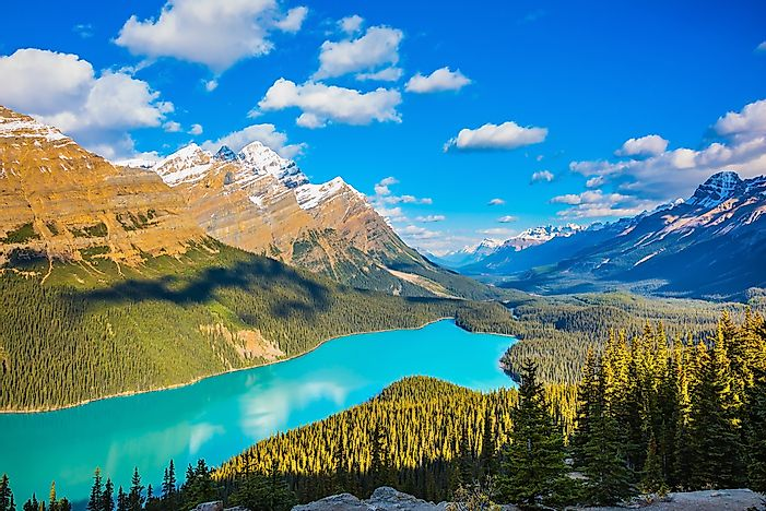 Lake Peyto, Banff National Park.