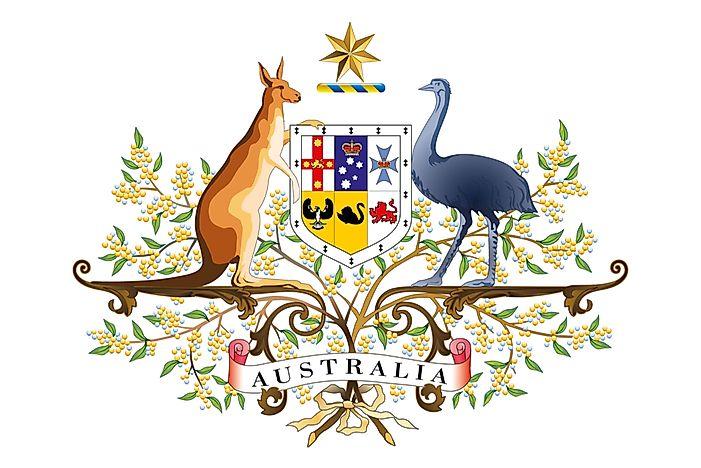 The National Animals Of Australia Worldatlas