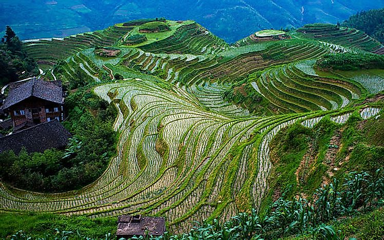 #6 Longji Rice Terraces