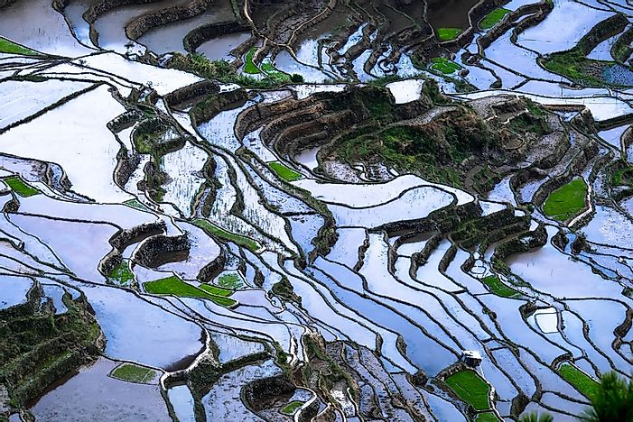 #12 Banaue Rice Terraces