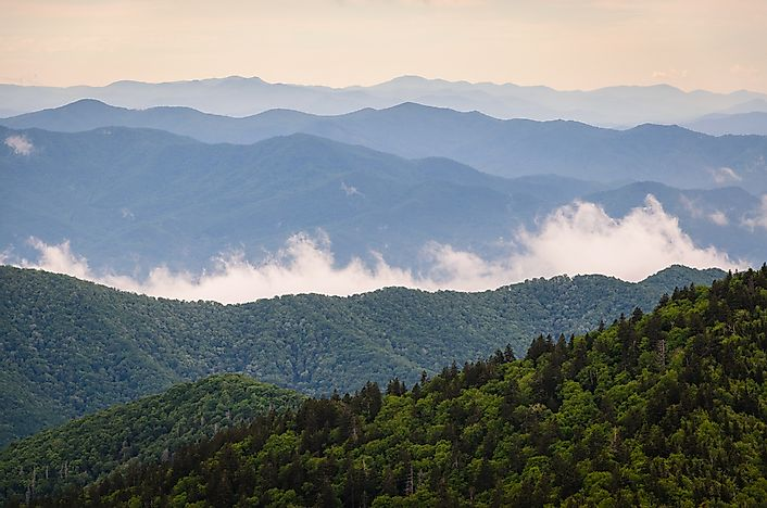 Dawn in Smokey Mountain National Park.