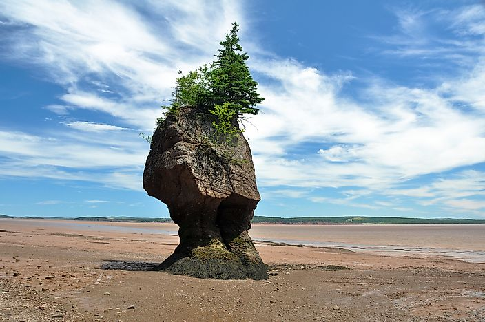 Hopewell rocks at the Bay of Fundy.