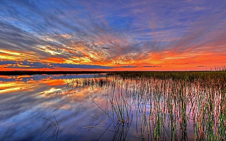 #6 Everglades National Park