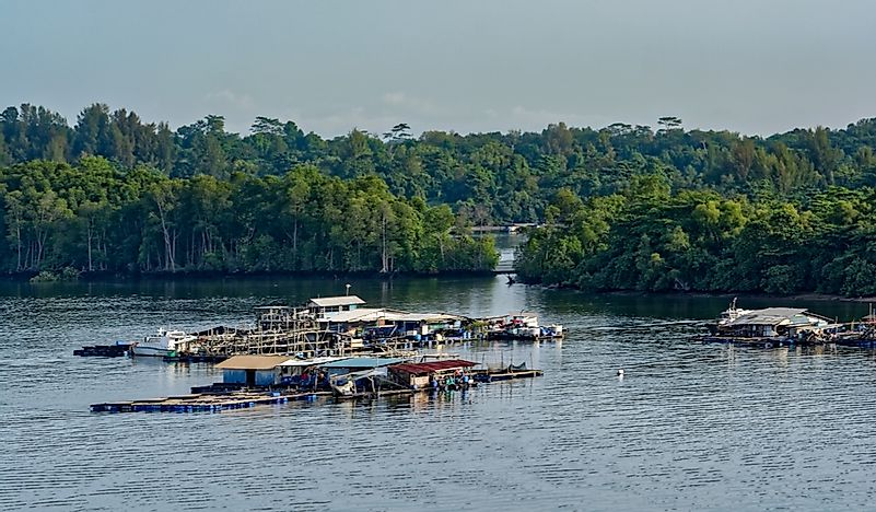 What Are The Major Natural Resources Of Singapore