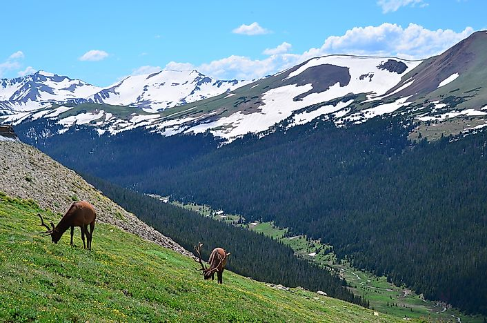#6 Rocky Mountain National Park
