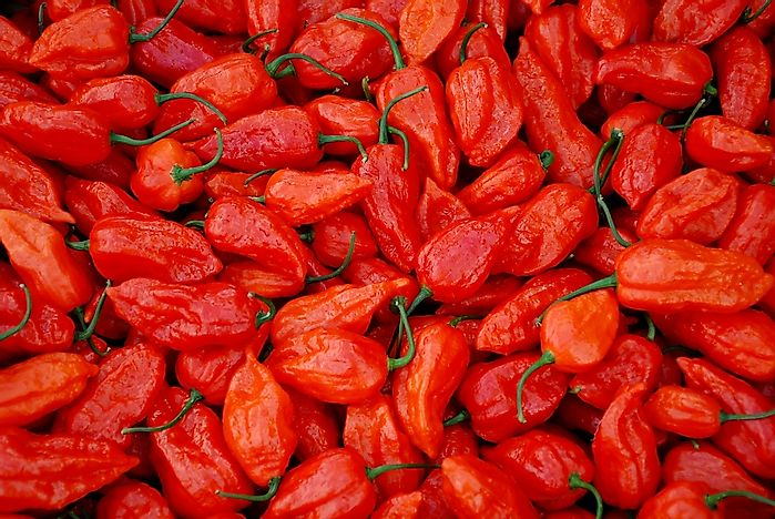 The Hottest Peppers In The World Worldatlascom