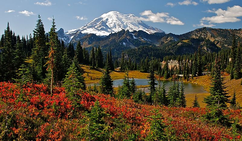 #3 Mount Rainier National Park
