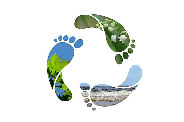 What Is a Water Footprint?