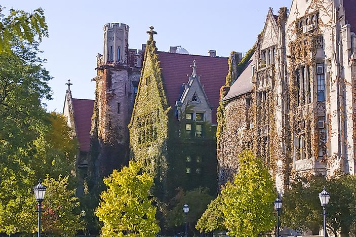 #5 University of Chicago