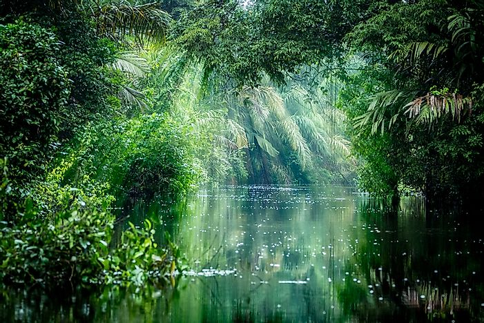 Tortuguero National Park - Unique Places Around the World