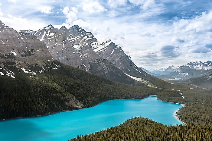 Peyto Lake, Yoho National Park.
