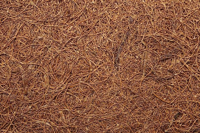 What Are The Different Applications Of Coir?