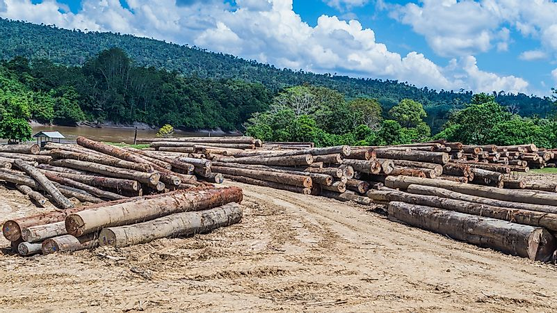 What Are The Major Natural Resources Of Indonesia