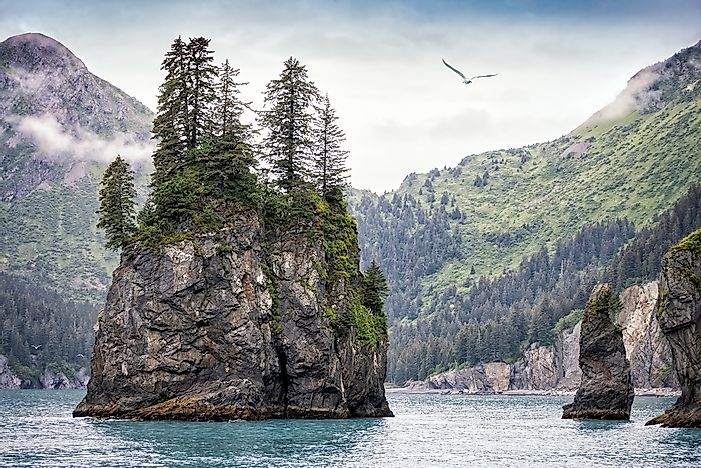 #5 Kenai Fjords National Park