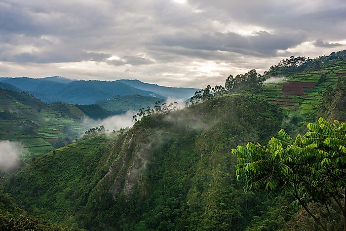 The landscape of Bwindi Impenetrable National Park.