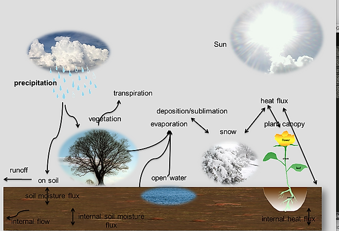 What Is Evapotranspiration?