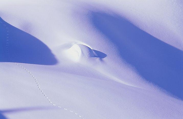 Where Is The Arctic Desert Worldatlas Com