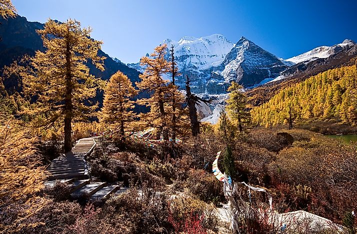 Autumn in the Yading Nature Reserve.