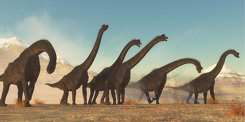 Brachiosaurus Facts: Extinct Animals of the World