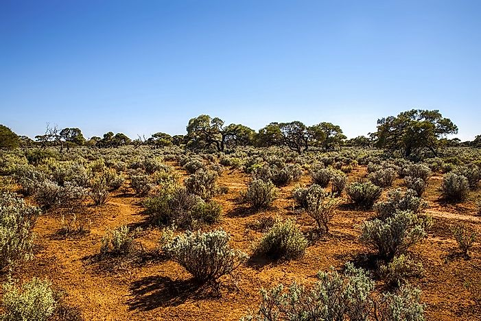 Where Does The Great Victoria Desert Lie?