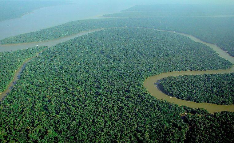 Countries Sharing The Amazon Rainforest - WorldAtlas.com