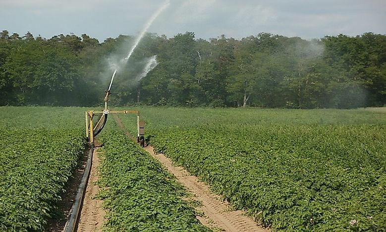 What Is The Environmental Impact Of Irrigation