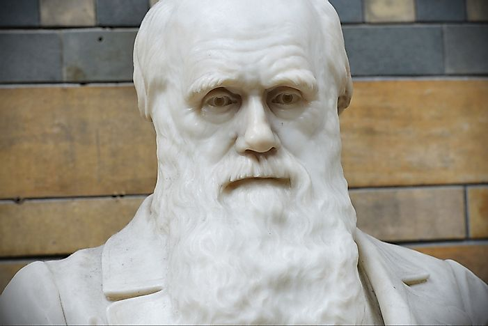 Charles Darwin - Important Figures in History