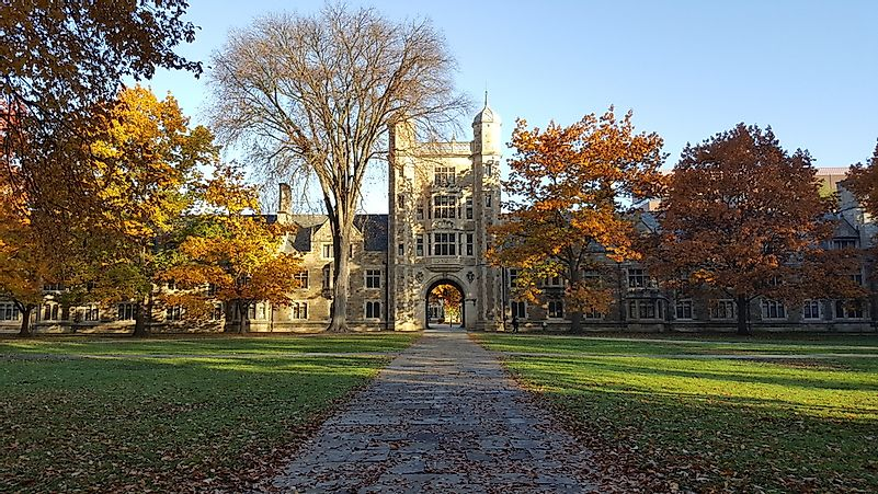#3 University of Michigan