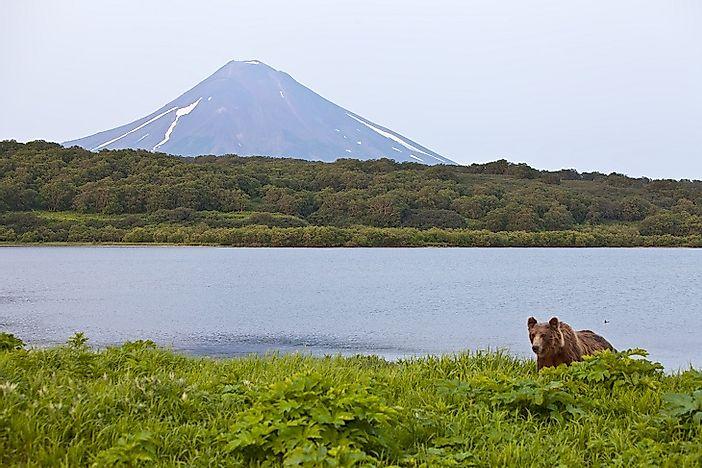 where is the kamchatka peninsula worldatlascom