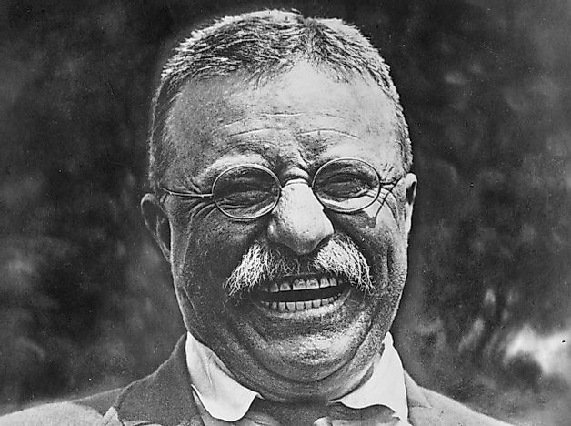 Theodore Roosevelt - US Presidents in History
