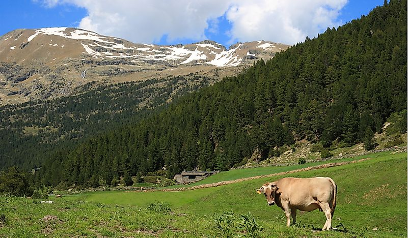 What Are The Major Natural Resources Of Andorra?