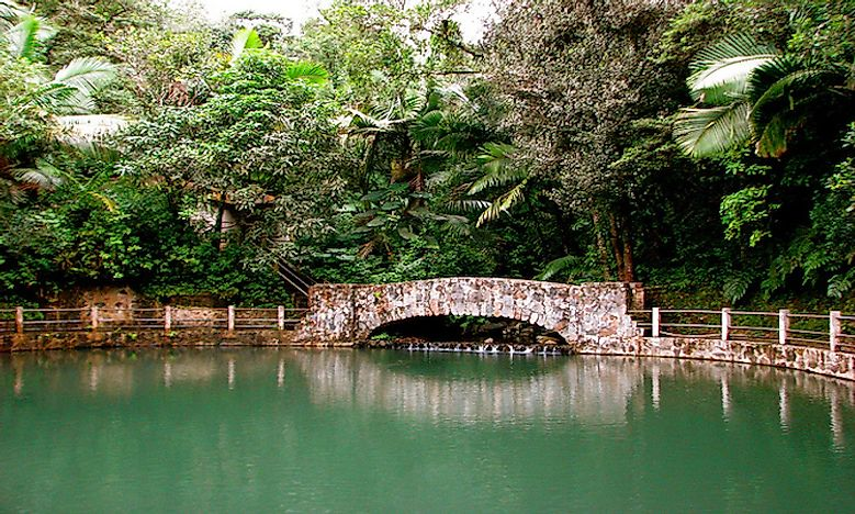 #6 Location Of The El Yunque National Rainforest -