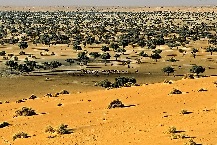 Niger's Top National Parks